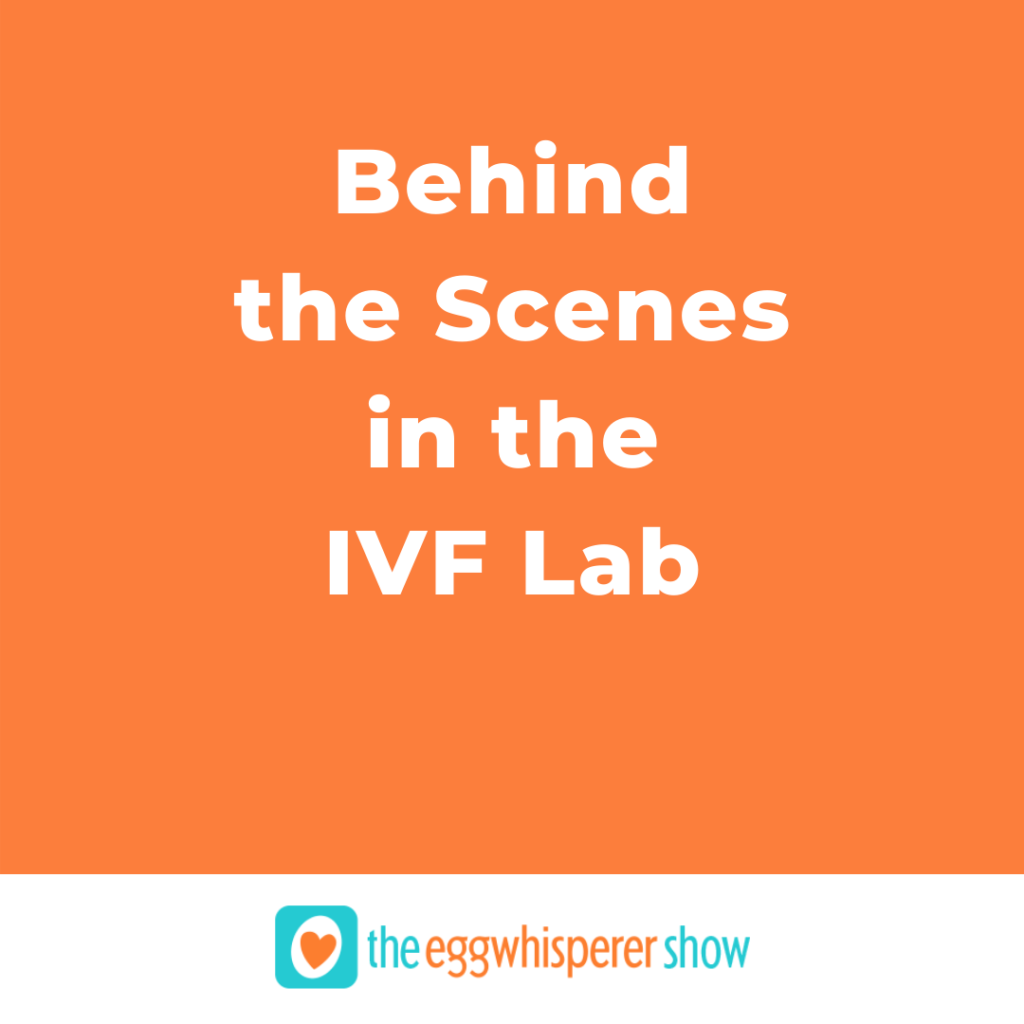 Behind the Scenes in the IVF Lab